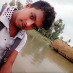 mithu ahmmed Profile Picture