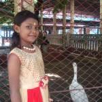 Abrita Banik Profile Picture