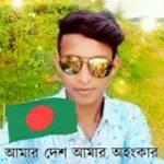 Saidul Joy Profile Picture