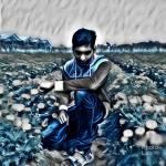Shakib Hassan Profile Picture