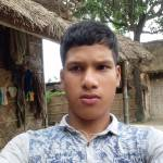 Tapan Roy profile picture