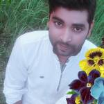 Mobasher Hossain Profile Picture
