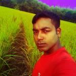 harun or rashid Profile Picture