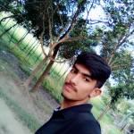 lizon Profile Picture
