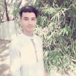 mk mahmud Profile Picture