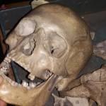 Nelufar 196 Profile Picture