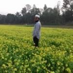 Rajib Adnan Profile Picture