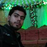 mohammad elias Profile Picture