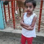 tareq raj Profile Picture