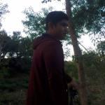 omeo starc Profile Picture