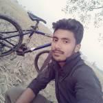 Alok Kumar Profile Picture