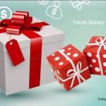 Forex Bonus Profile Picture