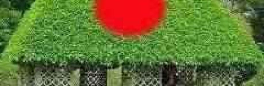Samiul Islam Shamim Cover Image