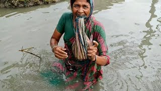 Village Woman Unique Fishing Skills 2019   Tiny Fish Catching By Hand   Best Hand Fishing Method