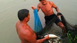 Amazing Big Net Fishing | Smart Fishermen Huge Freshwater Fish Catching By Big Net From Village Pond