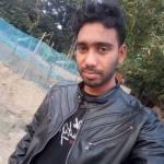Md Tipu Profile Picture