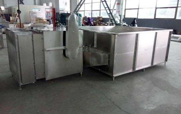How To Choose A Professional Fruit Processing Machine