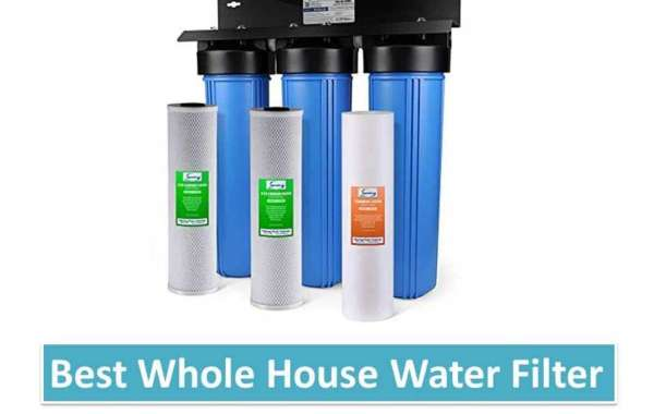 The Exceptional Water Softeners of 2020