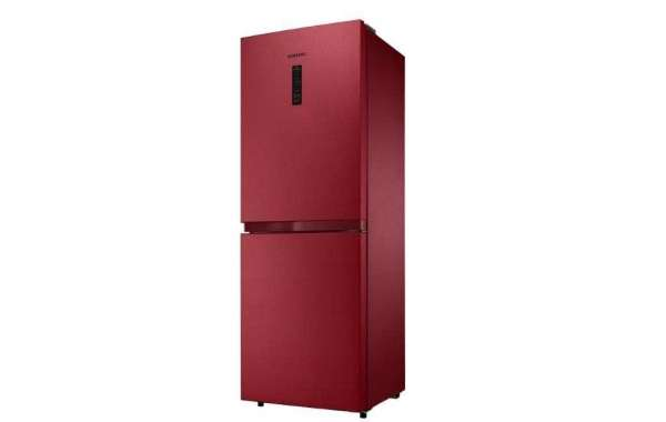 Ideal Non-Frost Refrigerator For Your House