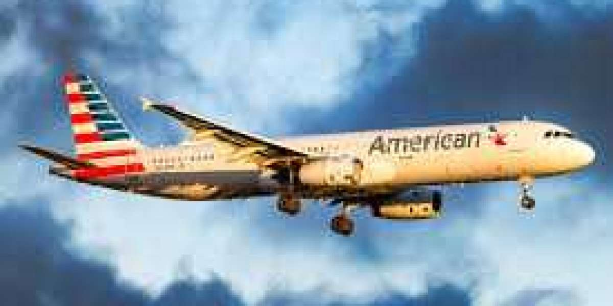 Locate a Suitable Travel Holiday Package by means of American Airlines Contact Number