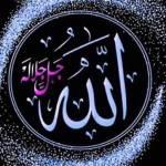Islamic Opinion BD Profile Picture