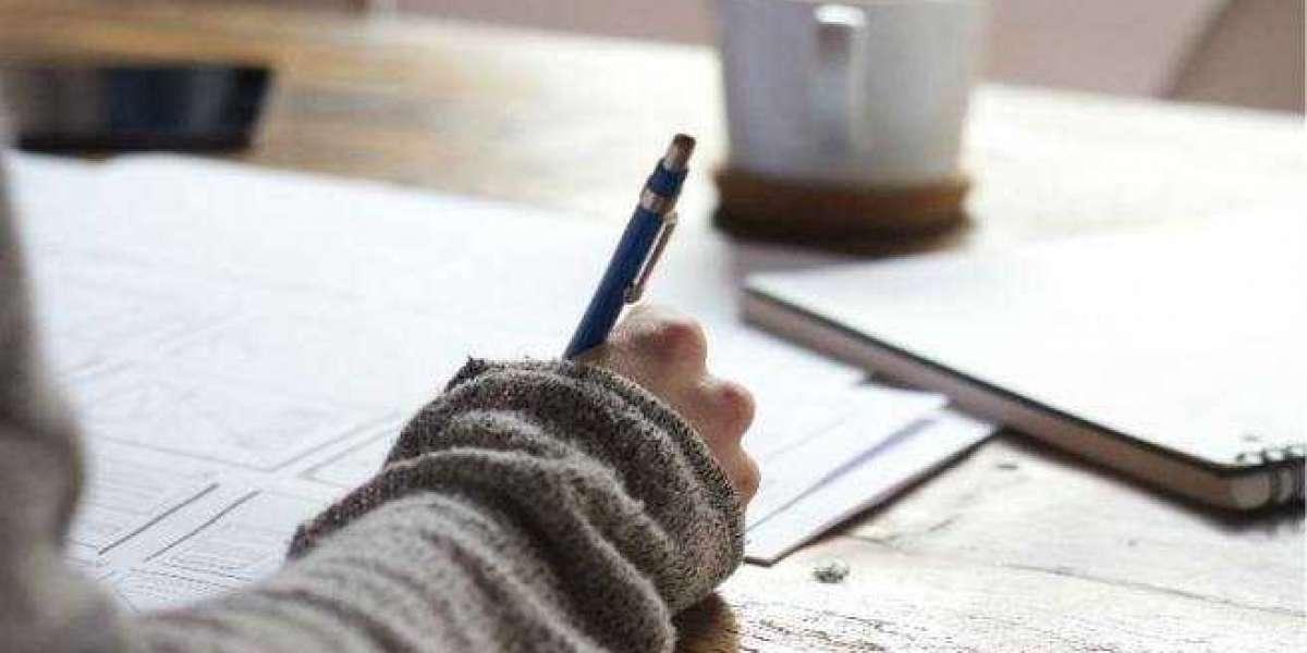 Sample Sat Essay Inquiries